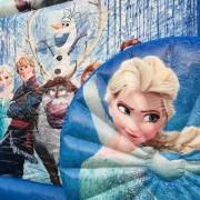Batuudi rent Frozen tõld Elsa tõlla ratta pilt